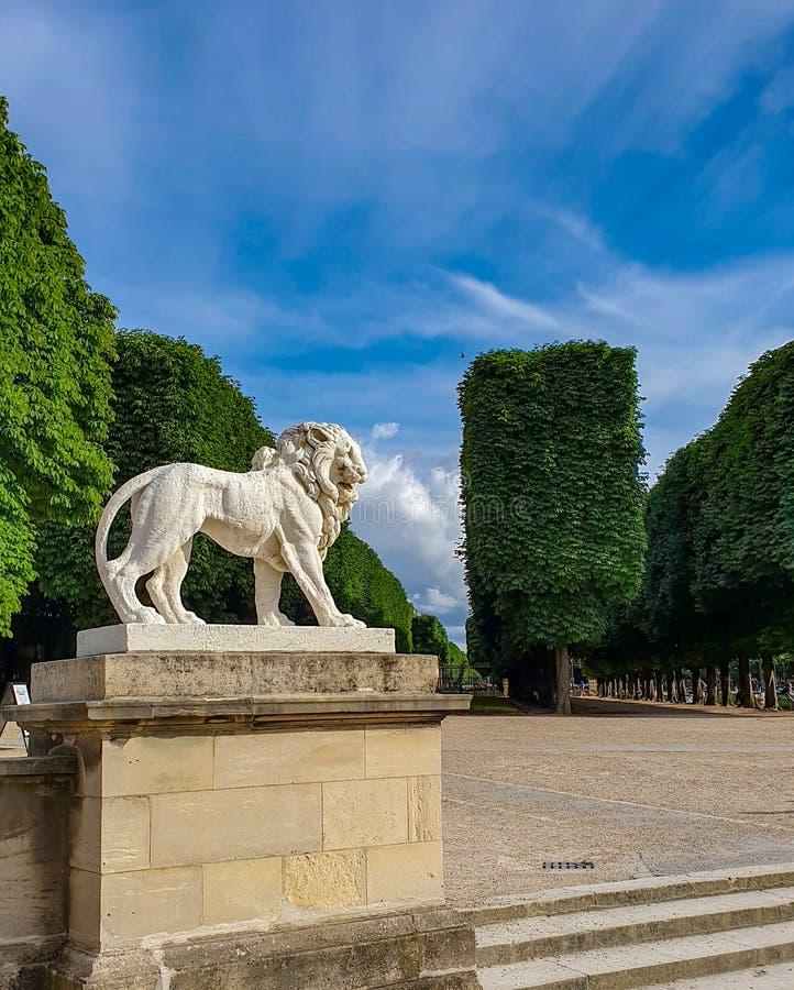 Parijs, Frankrijk, Juni 2019: het standbeeld van leeuw in Jardin du Luxemburg Luxemburg tuiniert royalty-vrije stock foto