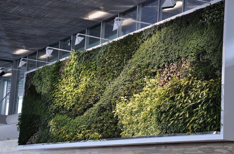 Parijs, 23 juni: Natuurlijk Groen Muurbinnenland van Charles de Gaulle Airport in Parijs stock foto