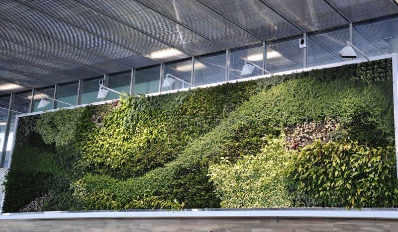 Parijs, 23 juni: Natuurlijk Groen Muurbinnenland van Charles de Gaulle Airport in Parijs royalty-vrije stock fotografie