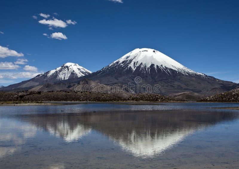 Parinacota Volcano Cone in Nacional Parque Lauca, Chile royalty free stock image