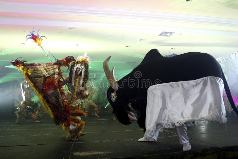 parintins фольклора празднества Бразилии стоковые фотографии rf