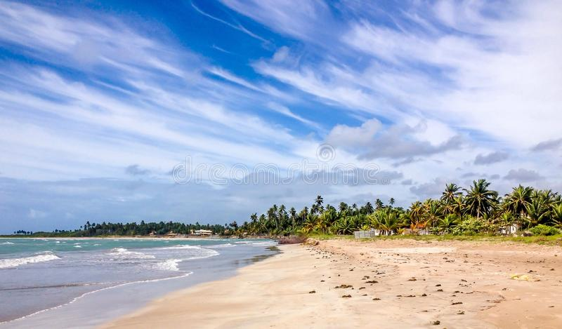 Paripueira strand, Maceio, Brasilien arkivbilder