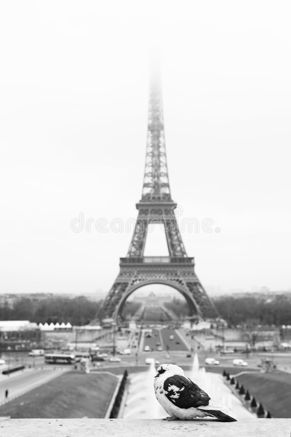Paris #45 photo libre de droits