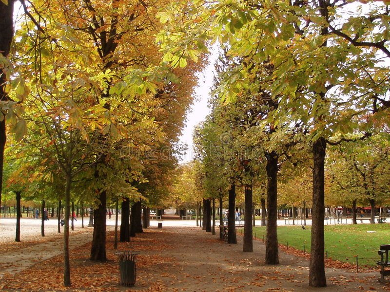 Paris in Autumn royalty free stock photography