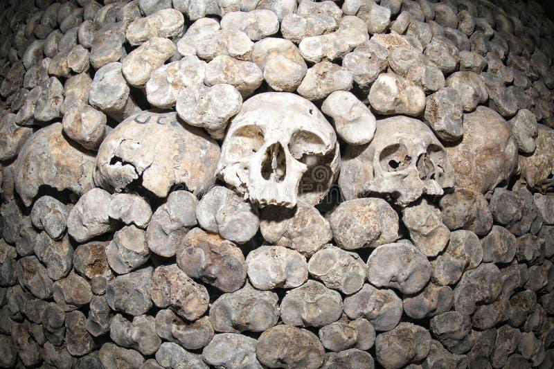 Paris Catacombs Skulls And Bones Stock Photo