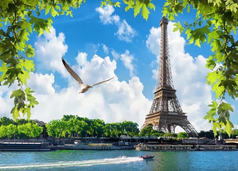 Paris dans le jour photos libres de droits