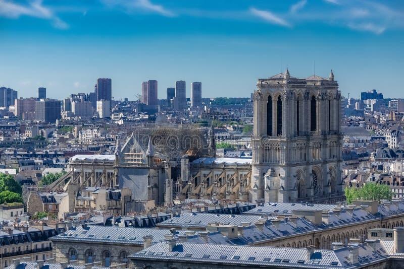Paris den Notre-Dame domkyrkan fotografering för bildbyråer