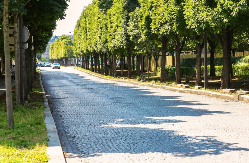 Paris, França - 14 de julho de 2014: grande estrada árvore-alinhada pavimentada com n imagem de stock