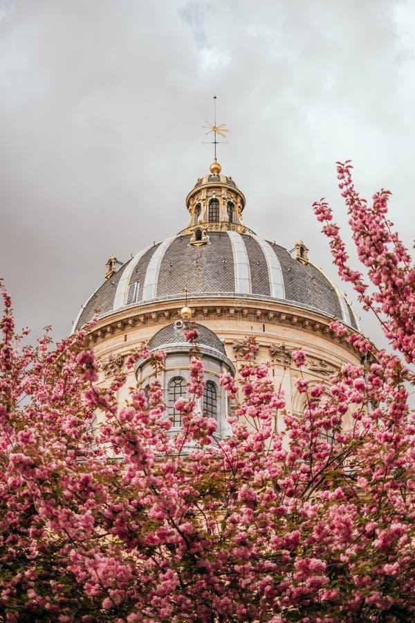 Institut de France royalty free stock images