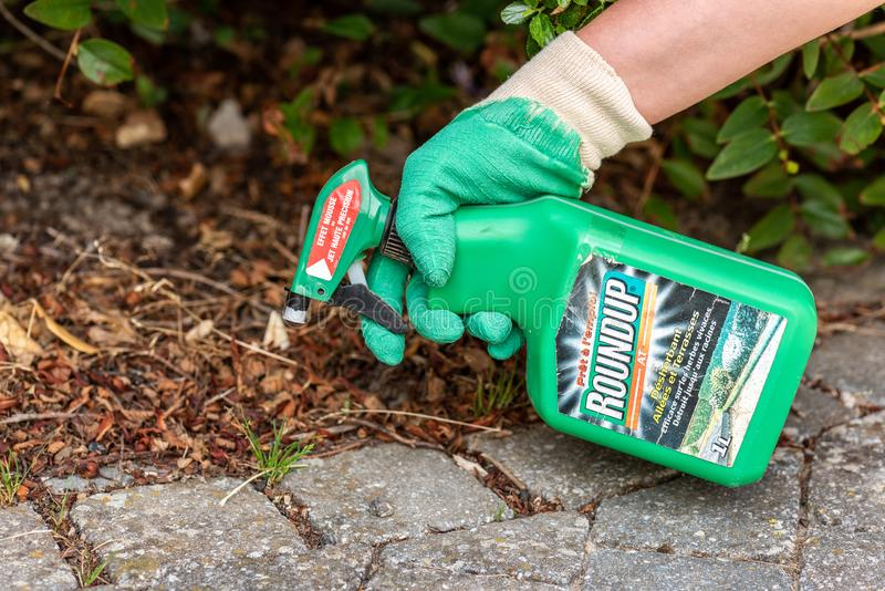 Paris, France - August 15, 2018 : Gardener using Roundup herbicide in a french garden. Roundup is a brand-name of an herbicide con. Taining glyphosate, made by royalty free stock photo