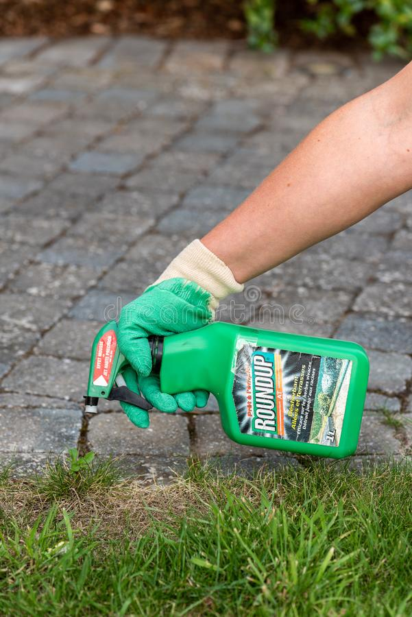Paris, France - August 15, 2018 : Gardener using Roundup herbicide in a french garden. Roundup is a brand-name of an herbicide con. Taining glyphosate, made by stock photo