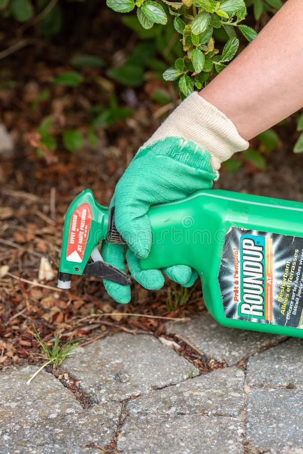 Aris, France - August 15, 2018 : Gardener using Roundup herbicide in a french garden. Roundup is a brand-name of an herbicide cont. Paris, France - August 15 royalty free stock photo