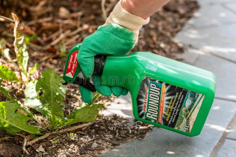 Paris, France - August 15, 2018 : Gardener using Roundup herbicide in a french garden. Roundup is a brand-name of an herbicide con. Taining glyphosate, made by stock images