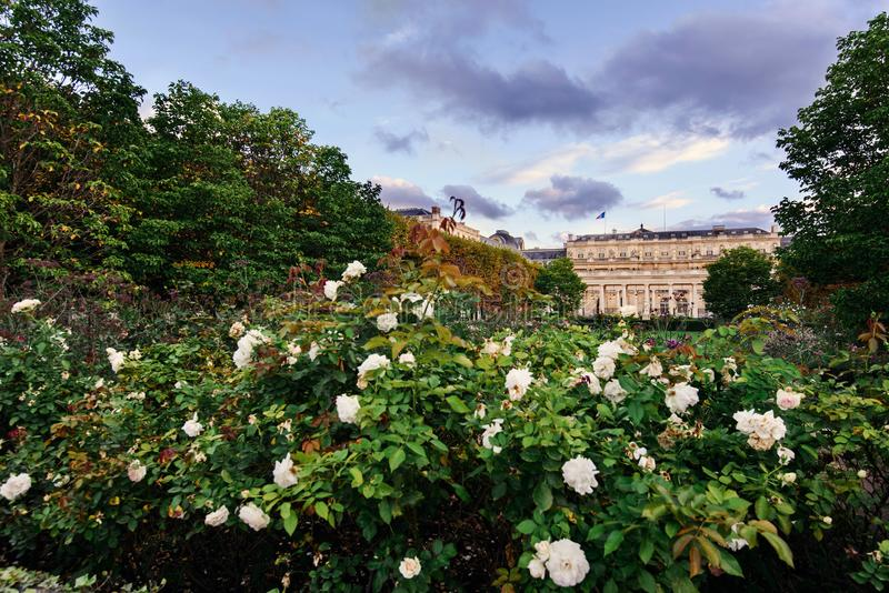 Royal Palace with Blooming Garden in Paris royalty free stock photography