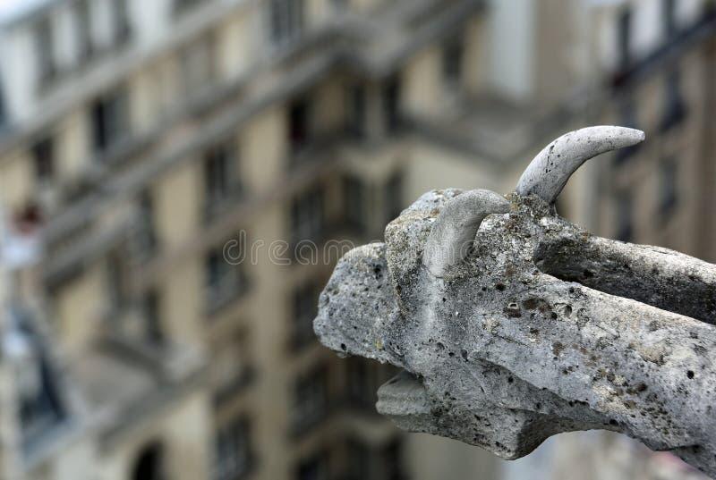 Paris gargoyle of Notre Dame. Paris France gargoyle of Notre Dame royalty free stock image