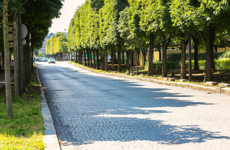 Paris, France - Jul 14, 2014: large paved tree-lined road with n stock image