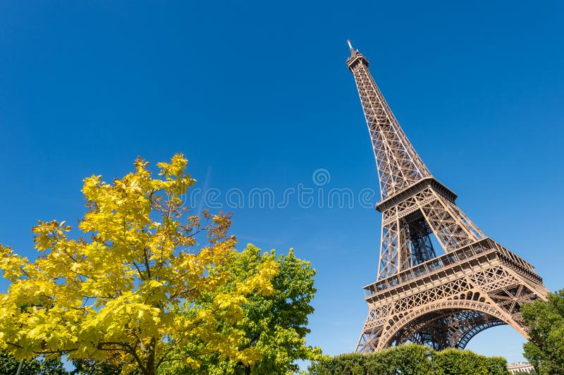Eiffel Tower from the Champ de Mars gardens in summer. stock photography