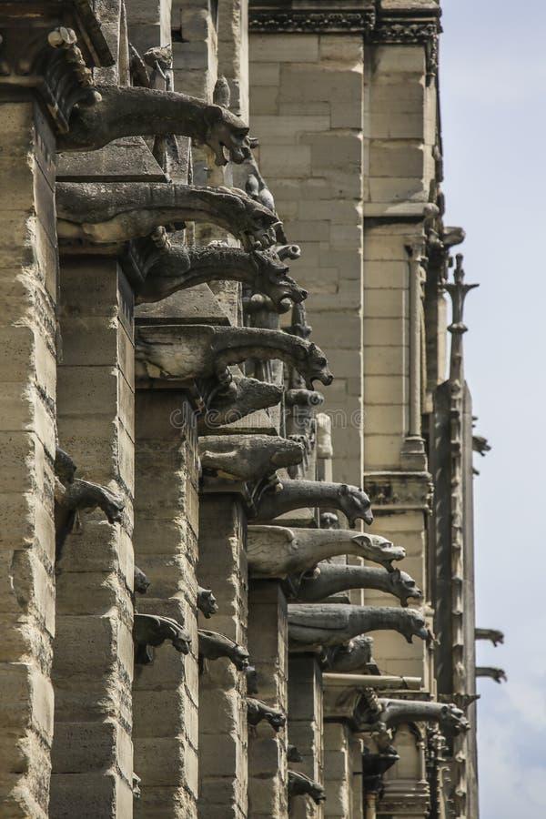 PARIS/FRANCE - Juni 2, 2017: Notre Dame av Paris, Frankrike, vertikala vattenkastare och rytande och skälla skenbilder royaltyfri foto