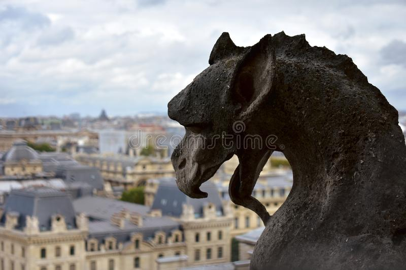 Notre Dame Cathedral, Paris, France. Gargoyles and chimeras, demon closeup. stock photography