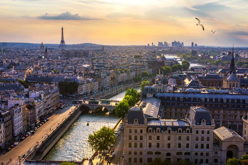 Paris, France, Seine river cityscape in summer colors with birds flying over the city. Paris city aerial panoramic view. Paris is royalty free stock photo