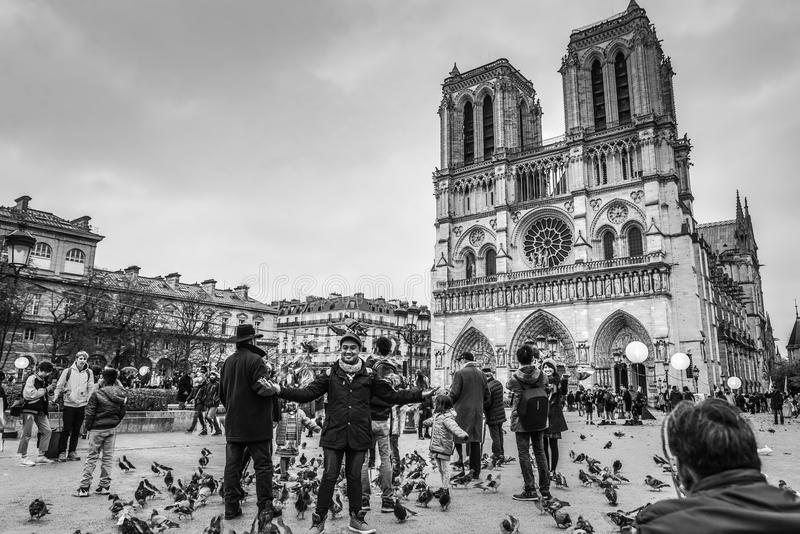 PARIS FRANKRIKE - NOVEMBER 11, 2017: DomkyrkaNotre-Dame de Paris - som byggs i fransk gotisk arkitektur och den, är bland largesn royaltyfria bilder