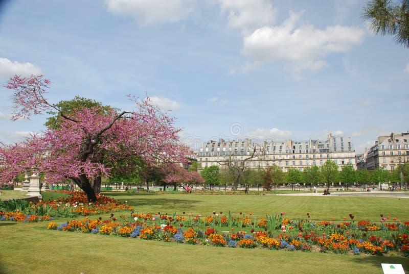 Paris - les tuileries lizenzfreie stockfotos