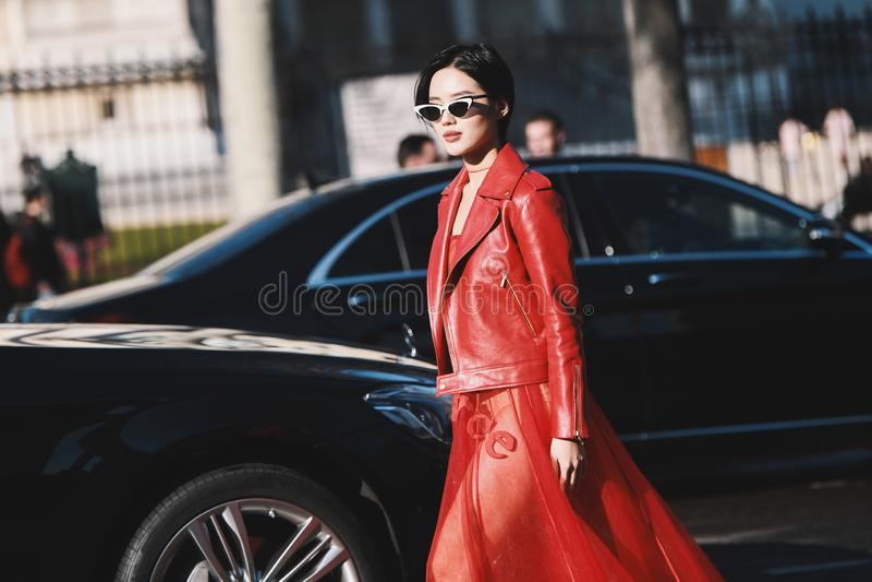 Paris-Mode-Woche - Straßenart - PFWAW19 stockbilder