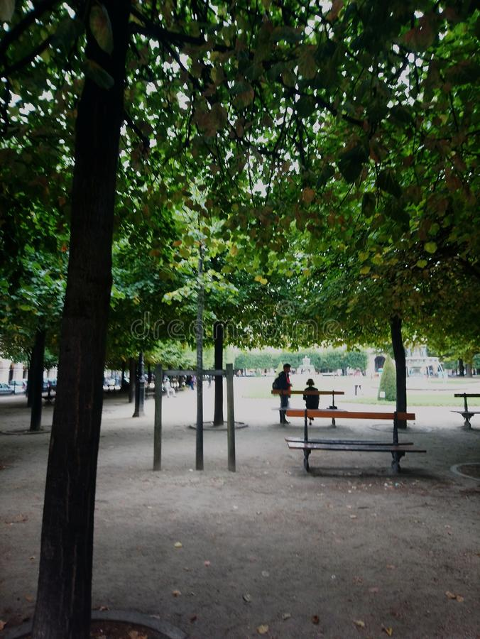 paris park royaltyfri foto