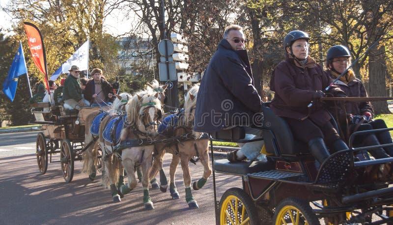 Paris-Pferdenparade lizenzfreies stockbild