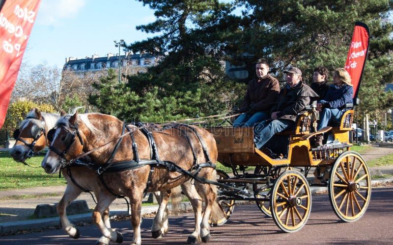 Paris-Pferdenparade lizenzfreie stockbilder