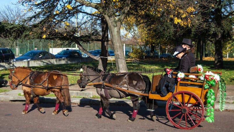 Paris-Pferdenparade lizenzfreie stockfotografie