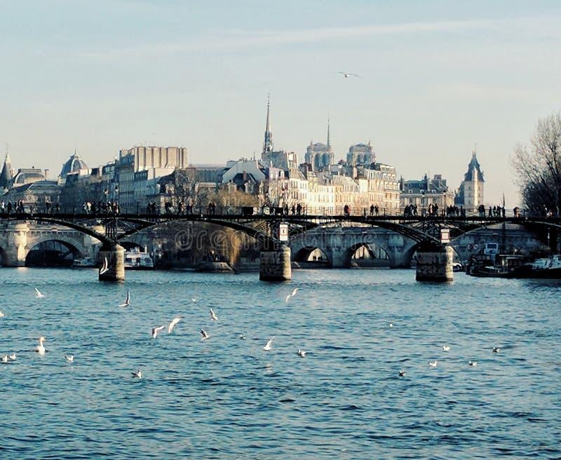 Paris and the river Seine, Paris, France royalty free stock photos