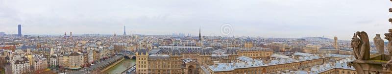 Paris sikt från Notre Dame i vinter fotografering för bildbyråer