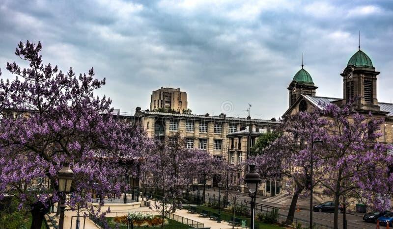 Paris spring bloom HDR stock image
