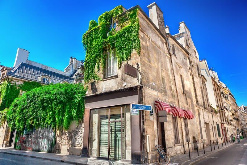 paris street obraz royalty free