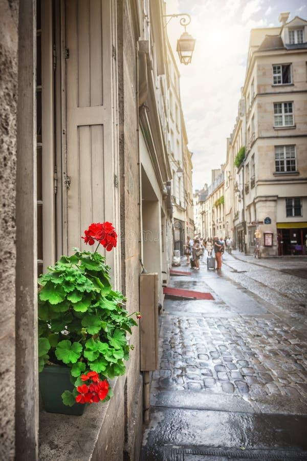 paris street obrazy stock