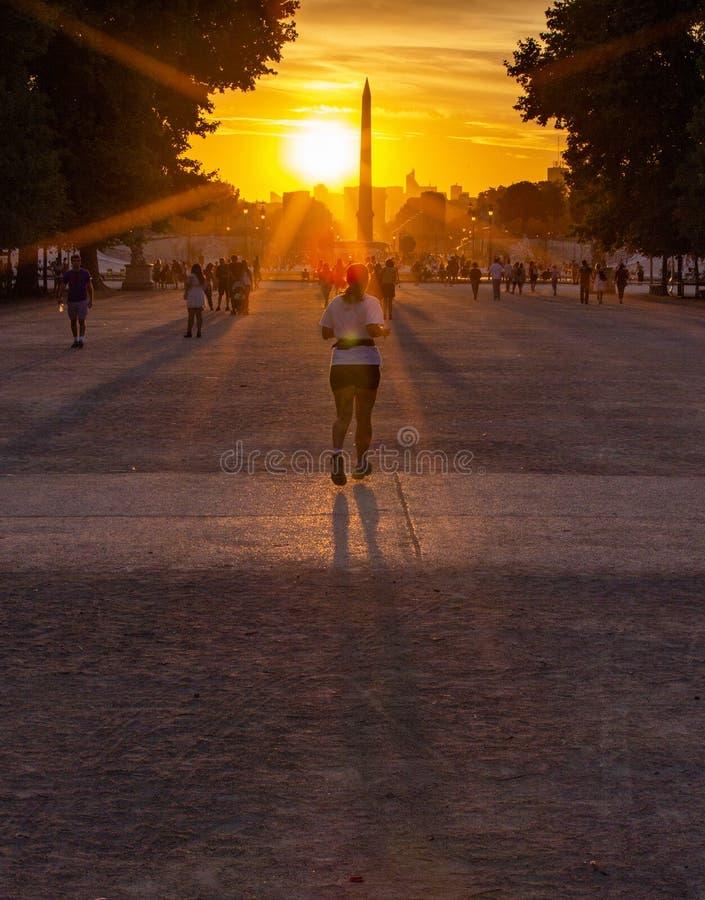Paris  Tuileries Gardens stock photo