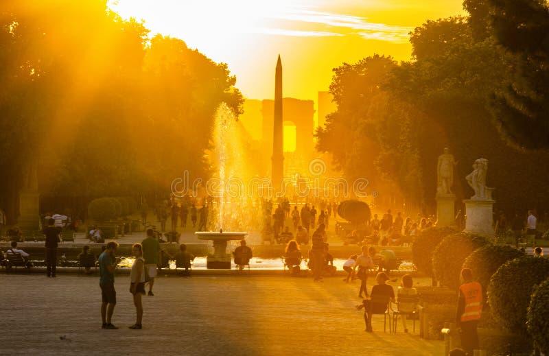 Paris Tuileries tr?dg?rdar fotografering för bildbyråer