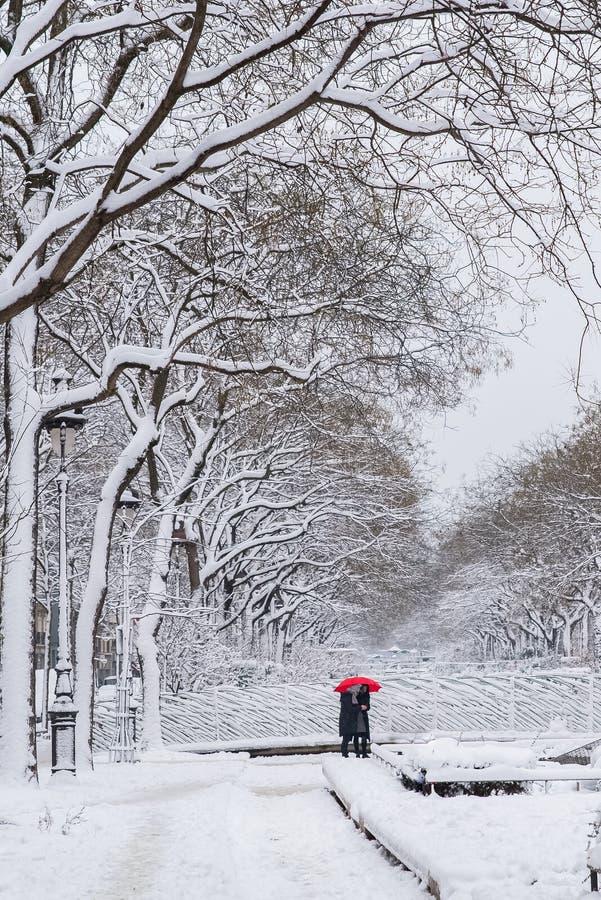 Paris under snön royaltyfri foto