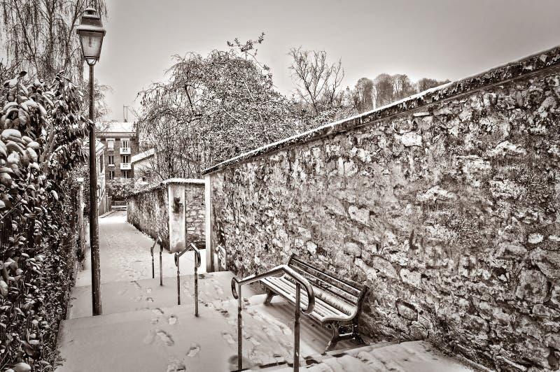 Paris under snön royaltyfria bilder