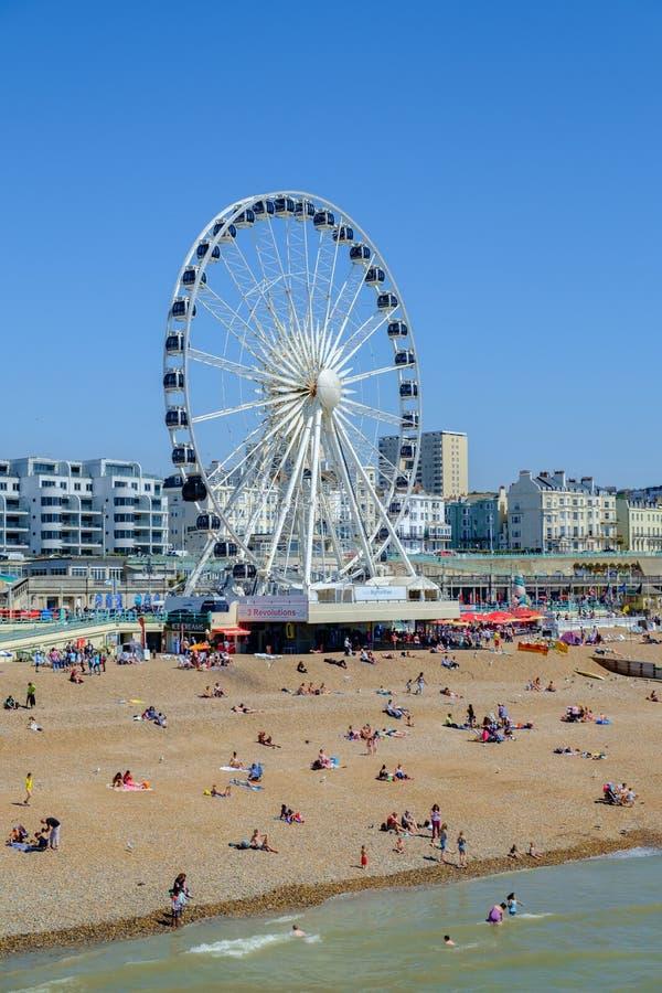 Pariserhjul Brighton UK royaltyfri fotografi