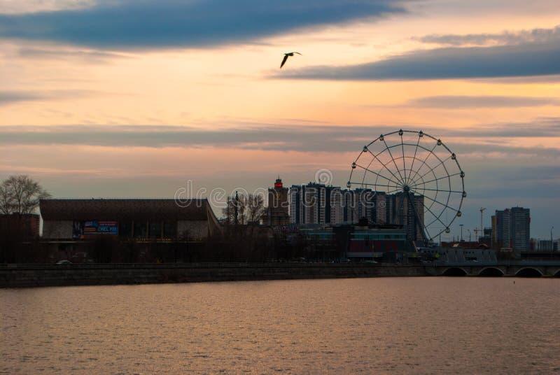 Pariserhjul under solnedgång royaltyfri fotografi