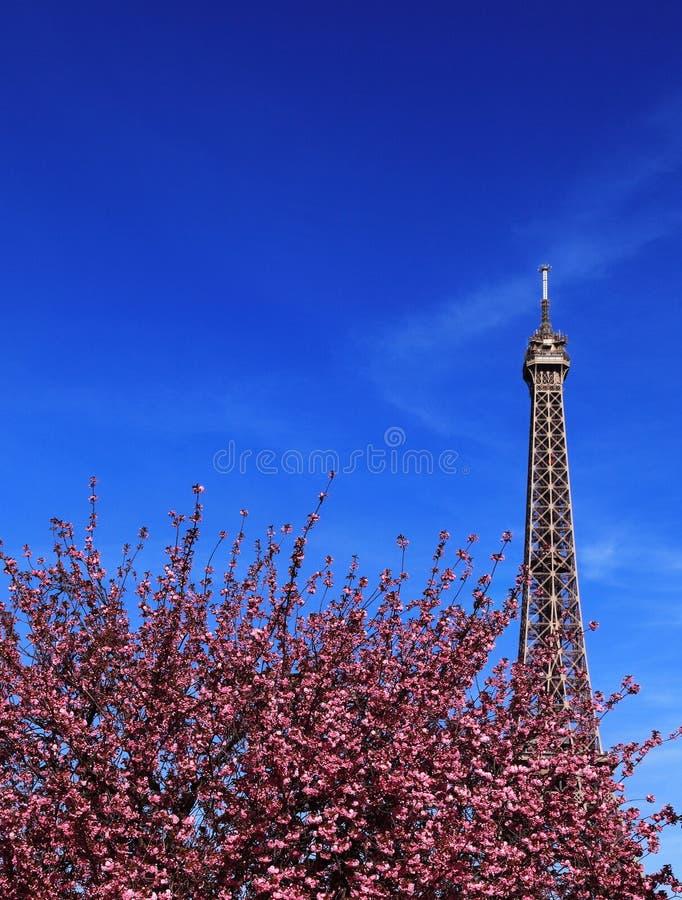 parisian fjäder royaltyfria bilder