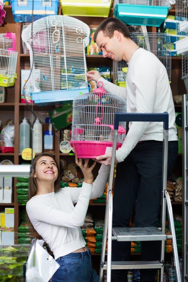 Parköpandeburen för fågel shoppar in arkivfoto