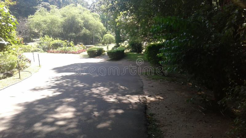 Park royalty-vrije stock afbeelding