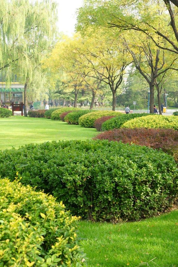 Park stockbild
