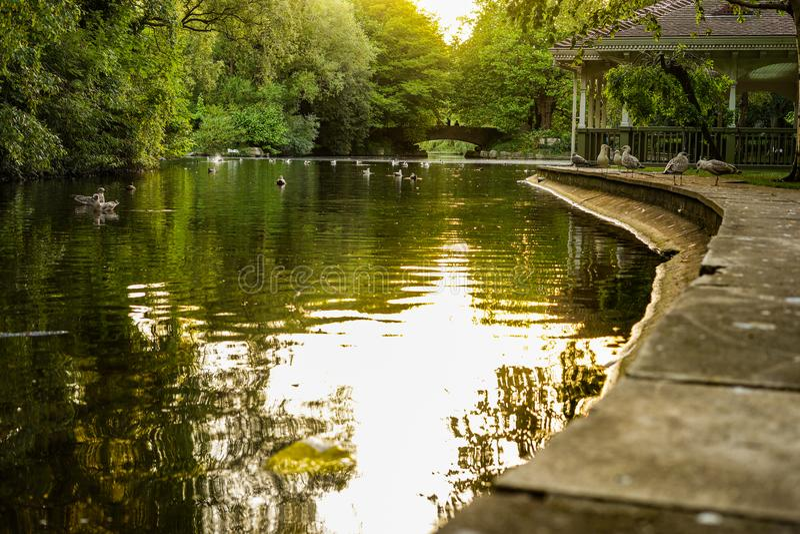 Park stock afbeeldingen