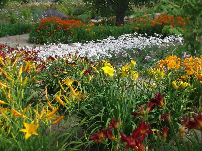 Download Park stock image. Image of botanic, nature, path, plant - 173657
