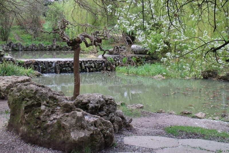 park 4 fotografering för bildbyråer