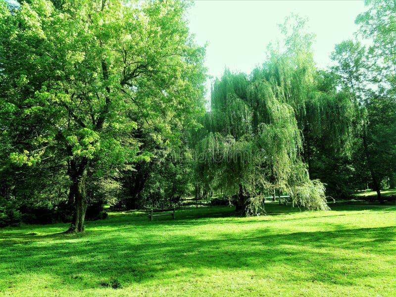 Park lizenzfreie stockfotografie
